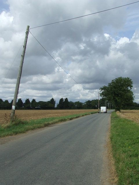 The Leaning Pole Of Sneath Common