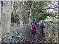 J3534 : Bridleway near Castlewellan by Rossographer
