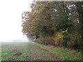 TM1998 : Fields beside Long Lane by Evelyn Simak