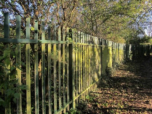 Fence, Oldbury Court