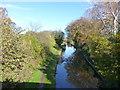 SJ8459 : The Macclesfield Canal near Acker's Crossing by Raymond Knapman