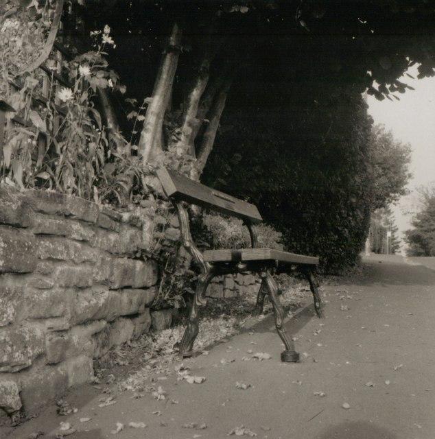 Bench at Greytree