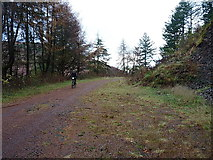 SN8647 : Forest road on the north side of Banc y Ddnas by Richard Law