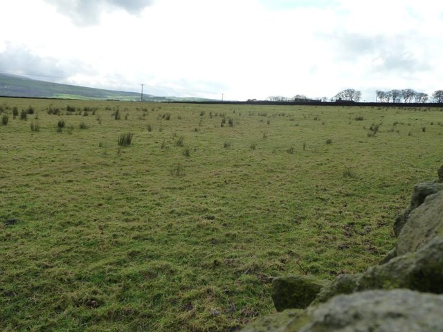 Rough pasture east of Well House Farm