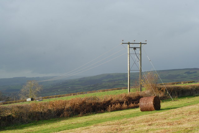 Bracken bales and telegraph poles