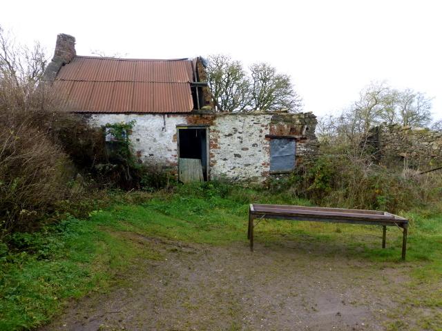 Ruined cottage, Bracky