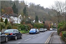 TQ3355 : Houses on the side of the Caterham Valley in Stafford Road by David Martin