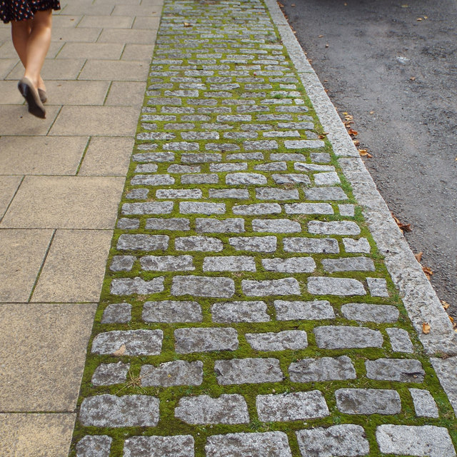 Mossy joints in deterrent paving, West Street, Warwick