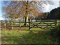 TQ0750 : Paddocks near Woolgar's Farm by Alan Hunt