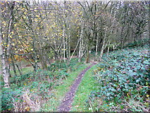 SD9927 : New bridleway to Hirst Bridge from Sandy Gate Lane opposite Law Lane by Humphrey Bolton