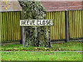 TM1579 : Reeve Close sign by Geographer