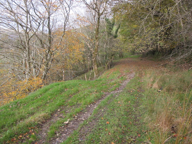 Sligo: Cope's Mountain. Part Of Track To Summit