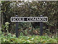 TM1479 : Scole Common sign by Geographer