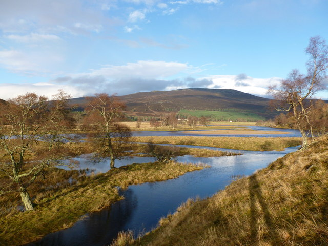 Braiding in the River Dee