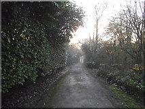 TQ1665 : The entrance to Stokes Field, Long Ditton by David Howard