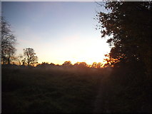 TQ1665 : Sunset over Stokes Field by David Howard