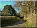 SO3077 : Back lane to Menutton farm, South of Clun by Peter Evans