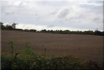 TG0907 : Near Hollandshill Farm by N Chadwick