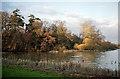 TQ1521 : Kneppmill Pond, Shipley by Stephen Richards