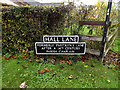 TM1582 : Hall Lane sign by Adrian Cable