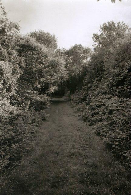 Old railway at Tudorville
