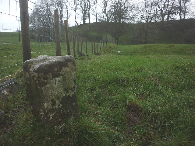 Boundary stone by the Belah (1)