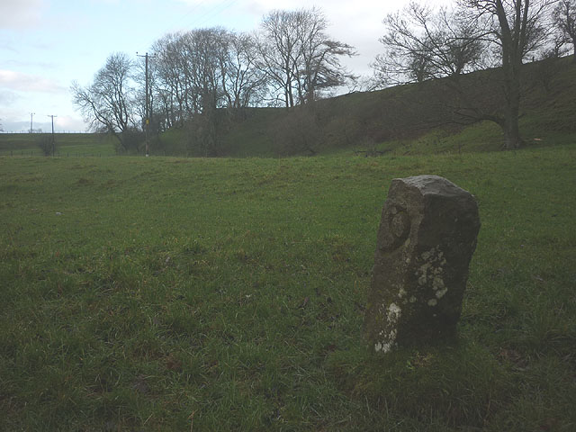 Boundary stone by the Belah (3)