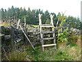 SE0025 : Ladder stile on Hebden Royd FP71 by Humphrey Bolton