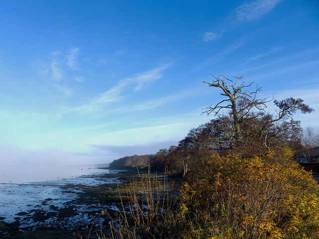 Cromarty Firth shoreline and fog