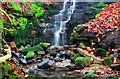 NZ1765 : Waterfall by peter maddison