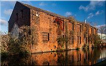 SJ8798 : Ashton Canal by Peter McDermott