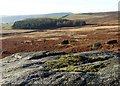 SK2384 : View to The Buck Stone by Stanage Edge by Neil Theasby