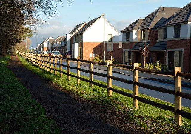 Wooden fencing alongside Brandon - Bishop Auckland Railway Path