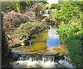 SK5453 : Newstead Abbey Japanese Garden - 1 by Trevor Rickard