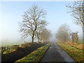 NY5169 : A misty morning on the road from Kirkcambeck to Roweltown by Oliver Dixon
