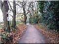 SZ0496 : Wheelers Lane by Alex McGregor
