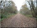 SO8694 : Walk View by Gordon Griffiths