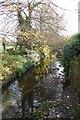 TQ3870 : Ravensbourne River by DS Pugh