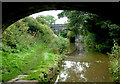 SJ8965 : Macclesfield Canal south of North Rode, Cheshire by Roger  Kidd
