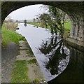 SD5380 : Under bridge 155 by David Lally