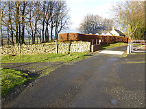 NY5675 : Cattle grid by New House by Oliver Dixon