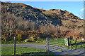SH6248 : Hillside at Blaen Nanmor by Nigel Brown