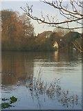 TQ1673 : Twickenham riverside, December 2014 by Stefan Czapski