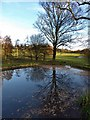 SE4017 : Reflections at Nostell by Steve  Fareham