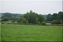 TQ5244 : Lake, Penshurst Park by N Chadwick