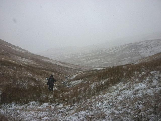 Snowing in Wren Gill