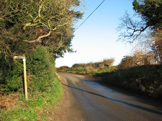 Footpath off Broad Lane by Evelyn Simak