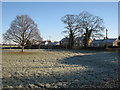 TL5562 : Swaffham Bulbeck: houses on Green Bank Road by John Sutton