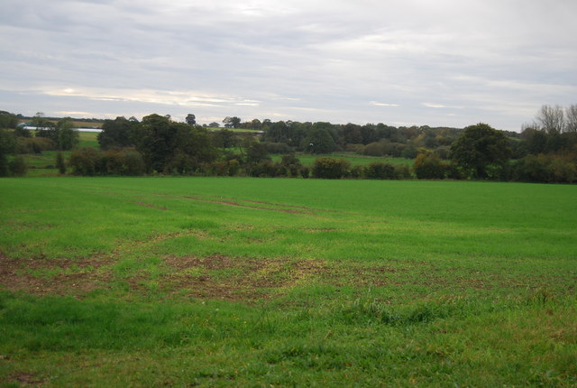 The Yare Valley