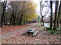 ST4294 : Wentwood Forest picnic area by Jonathan Billinger